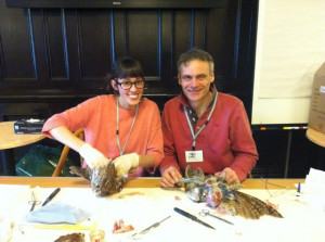 Mike Gadd and Jasmine Miles-Long Skinning Tawny Owls at the taxidermy Conference